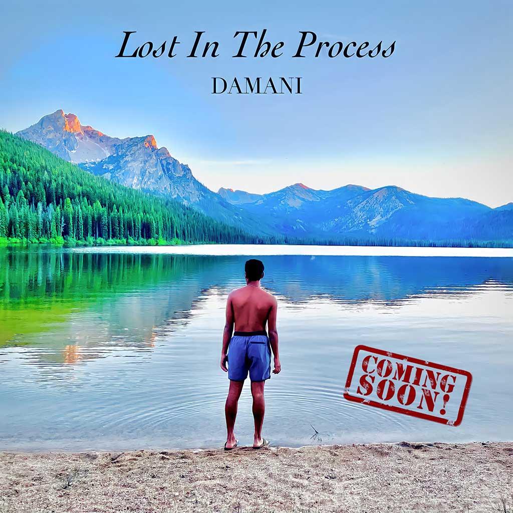 Damani Music Lost in the Process